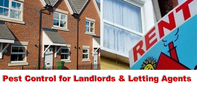 Wolverhampton Pest Control for Landlords and Lettting Agents